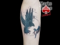 marko-tattoo-inked-oiseaux
