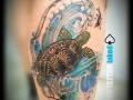 marko-tattoo-inked-tortue-trashpolka